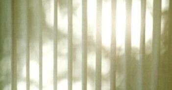 Pollenschutzgitter für die Fenster: Hilfe bei Heuschnupfen