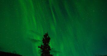 Hitze am Nordpol: der Klimawandel ist nicht schuld