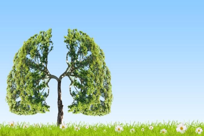 Achten Sie auf eine Radon freie Umgebung, dann kann die Lunge beruhigt aufatmen! (#4)