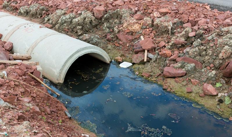 Schmutziges Wasser beeinträchtigt das pflanzliche und das tierische Leben gleichermaßen, das ökologische Gleichgewicht der Gewässer ist durch eingeleitete Abfälle gestört oder gar nicht mehr existent. ( Foto: Shutterstock-_kckate16  )