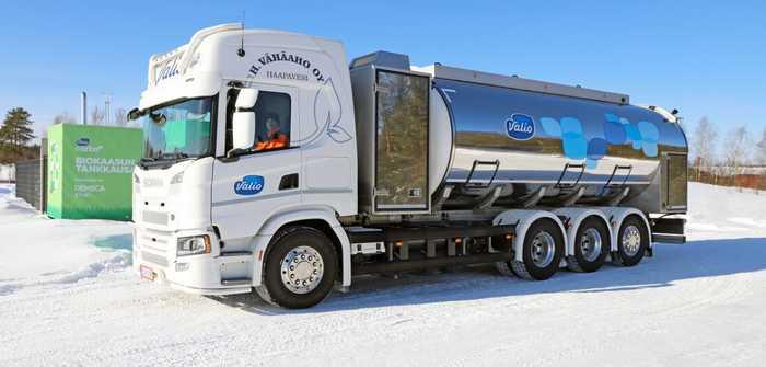 Valio und St1 produzieren Biogas aus Gülle: neuer Ansatz zur Reduzierung von Transportemissionen (Foto: VALIO/Tuovi Pulkkanen)
